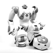 Will DataRobot replace data scientists? - Blog Image